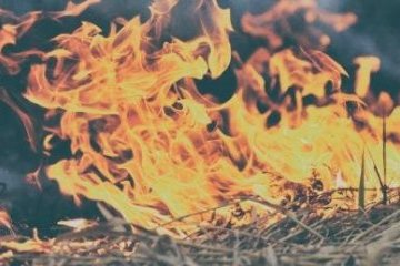Jest susza - nie wypalaj traw, nie używaj ognia w lesie